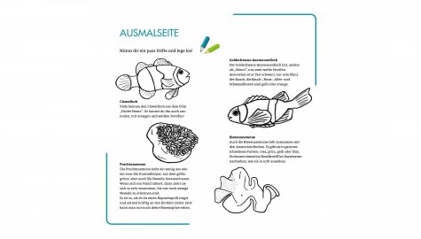 kostenlose malvorlagen, rätsel für kinder zum download tiere aus dem zoo
