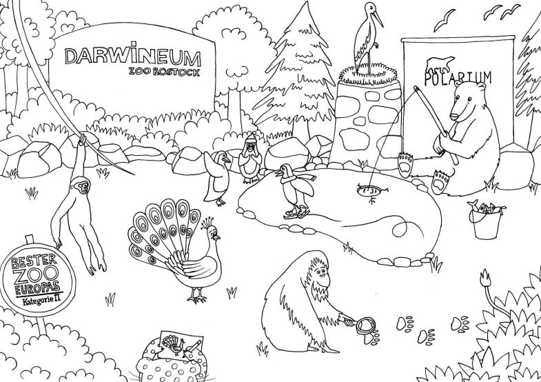Kostenlose Malvorlagen Ratsel Fur Kinder Zum Download Tiere Aus Dem Zoo